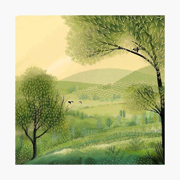 Pastures Green Photographic Print