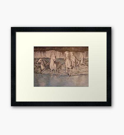 Storm Gallop Framed Print