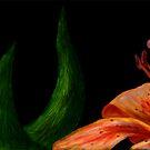 Orange Lily by fliberjit