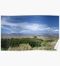 Sagebrush And Mountains Poster