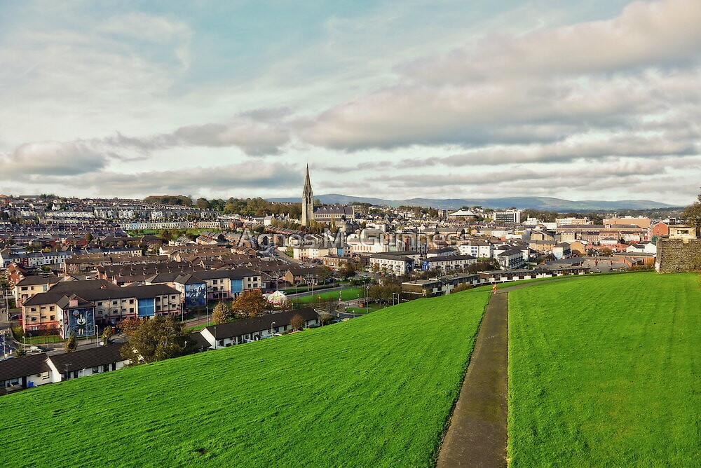 Derry from the City Walls by Agnes McGuinness