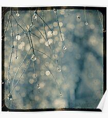 Raindrops TTV Poster