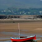 Little red boat............!                                            by Roy  Massicks