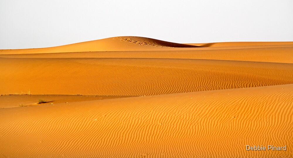 Sahara Sand, Morocco by Debbie Pinard