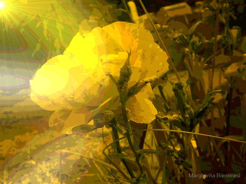 Yellow dream by Margherita Bientinesi