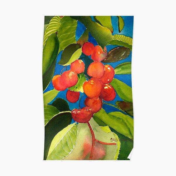 Rainier Rubies Poster