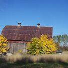 Michigan Barns by revdrrenee