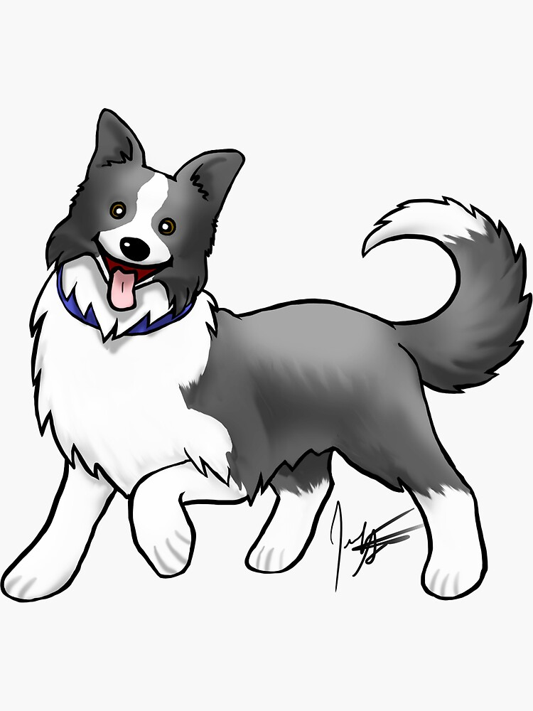 Border Collie by jameson9101322