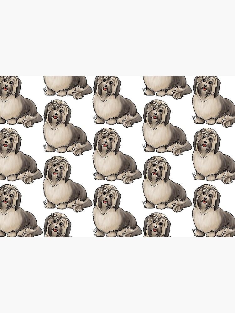 Havanese Dog by jameson9101322