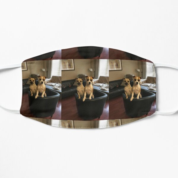 Dogs  Mask