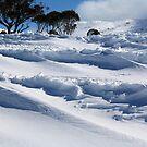 Waves of Snow near Perisher NSW Australia by Kym Bradley