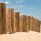 posts in the sand by ashley reed