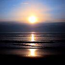 Good Morning Sunshine by Sharon Woerner