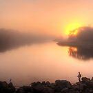 The Early Bird by Stephen  Nicholson