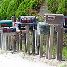 A mailbox haven ! by Anthony Goldman
