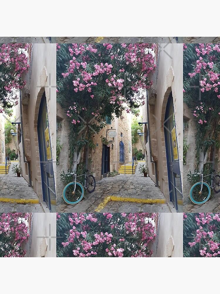 Jaffa, Tel Aviv, Holy land, Blue door, Blue bicycle  by PicsByMi