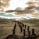 the bay at punta arenas chilie by ashley reed