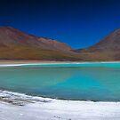 Laguna Verde Panorama by Nick  Taylor
