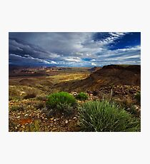 Afternoon in the Canyon Photographic Print
