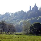 Alton Castle from Red Lane by Paul  Green