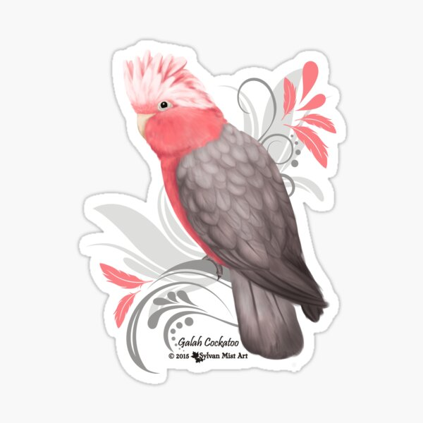 Galah Cockatoo Sticker