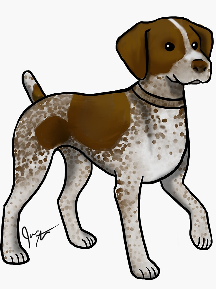German Shorthaired Pointer by jameson9101322