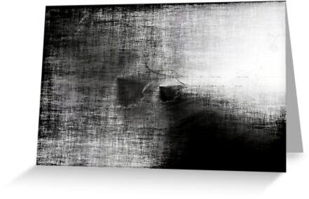 Anatomy of Greys by Benedikt Amrhein