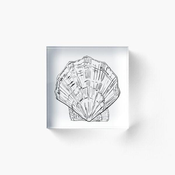 Seashell - black and white  Acrylic Block
