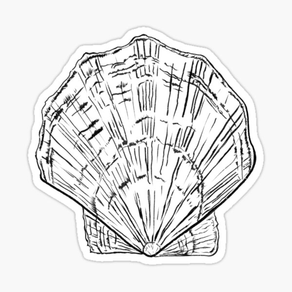 Seashell - black and white  Sticker