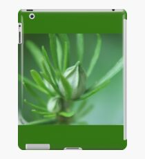 Buds iPad Case/Skin