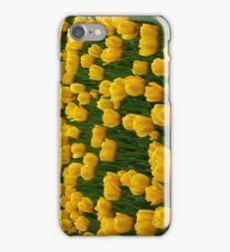 Tulips 2 iPhone Case/Skin