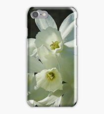 Daffodils 1 iPhone Case/Skin