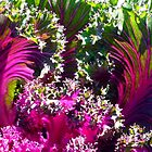 Kale Fantasy by WildestArt