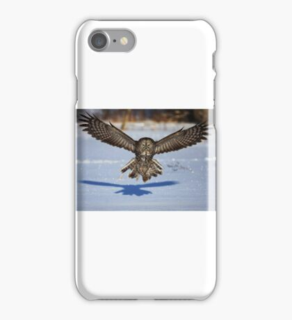 In your face - Great Grey Owl iPhone Case/Skin