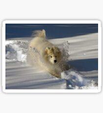 Snowplow Sticker