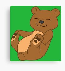 Brown Bear Cub Canvas Print