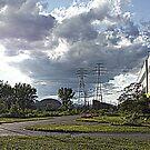 Hearn Driveway by PPPhotoArt