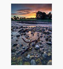 Pastel Dawn Driftwood Photographic Print