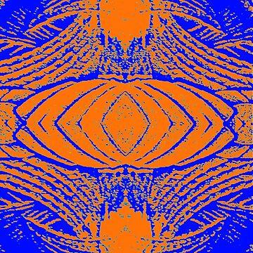 Orange Shell by robotxs
