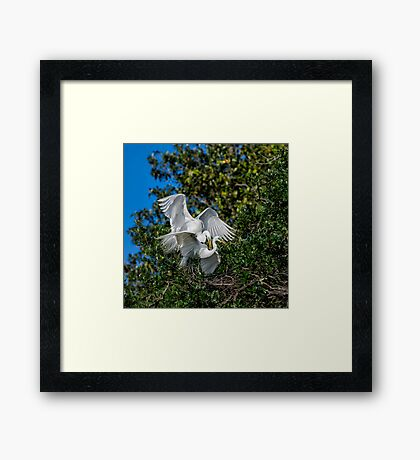Honey...Is that You? Framed Print