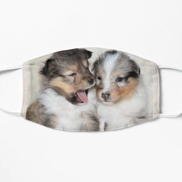 Sheltie Puppies Yawning Mask