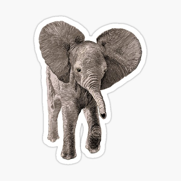 Baby Elephant design for children's t shirts  and more Sticker