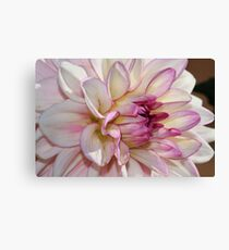 Single Dahlia Canvas Print