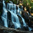 """Tooronga Falls"" by Heather Thorning"