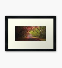 The Painted Queen - Mount Wilson NSW - The HDR Experience Framed Print