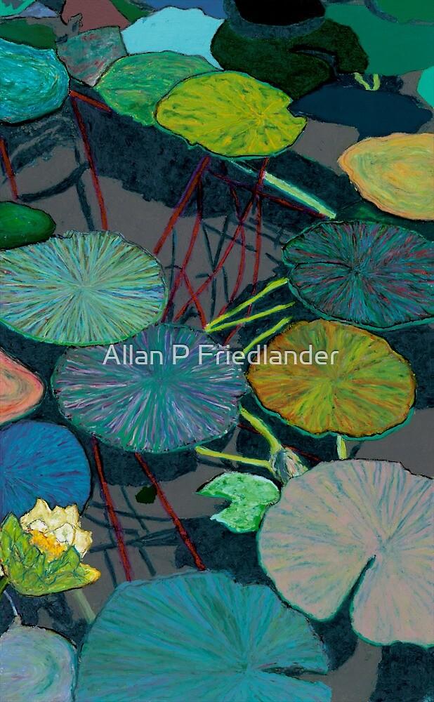 Dark Shadows by Allan P Friedlander