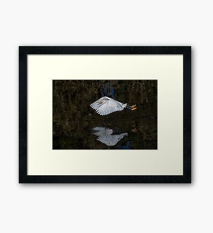 Fry on the Fly  Framed Print