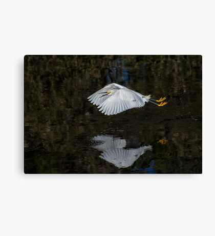 Fry on the Fly  Canvas Print