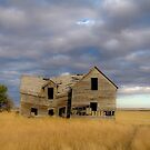 This Old House by anorth7