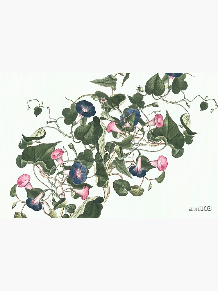 Little Climbers - botanical watercolour by anni103